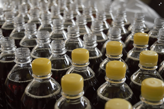bottles in production at plant